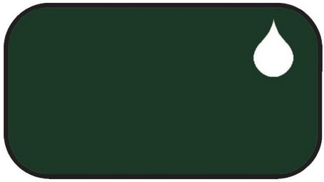 zielony RAL 6007